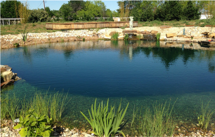 Blog - Natural Swimming Pools/Ponds Design & Construction - TOTAL HABITAT