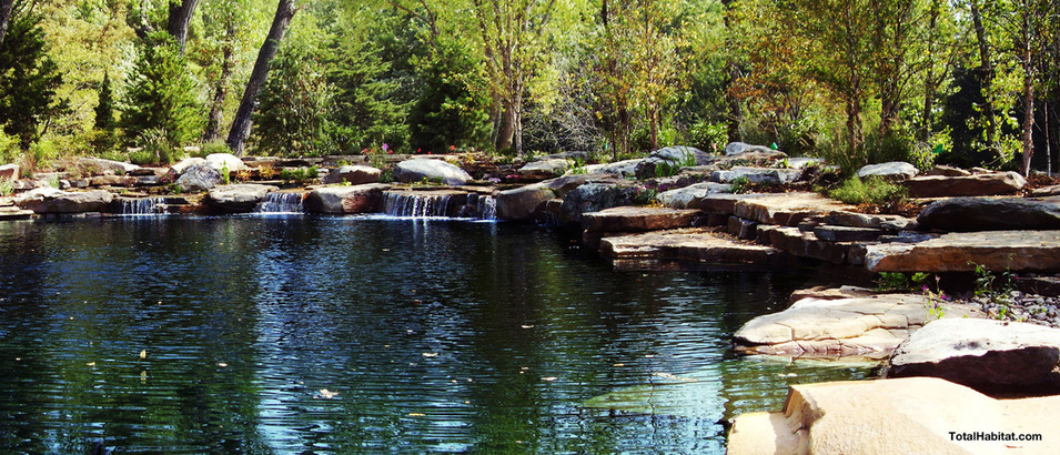 Rocky Natural Swimming Pool/Pond