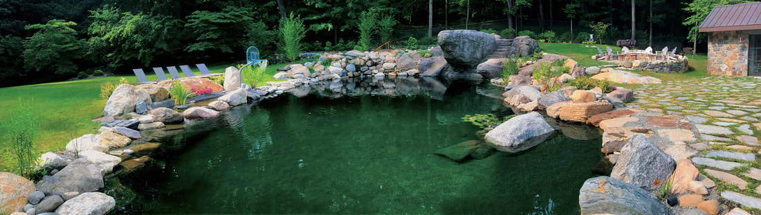 Custom Natural Swimming Pool/Pond Design - TOTAL HABITAT