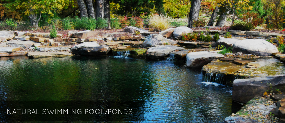 TOTAL HABITAT DESIGN U0026 FABRICATION SERVICES. Total Habitat Designs And  Builds Natural Swimming Pool/Ponds ...