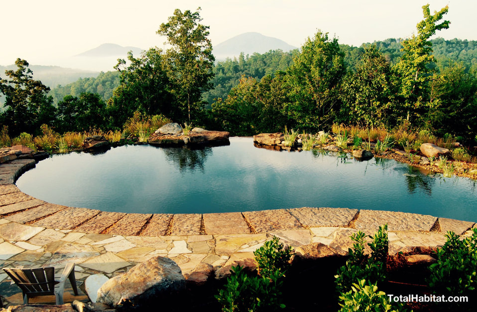 Natural Swimming Pool/Pond in the mountains