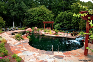 Natural Swimming Pool/Pond with Traditional Patio
