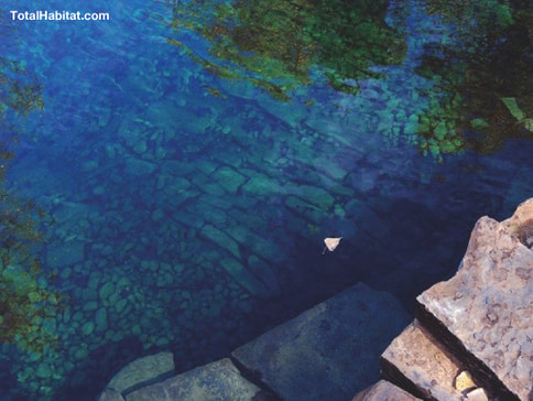 Crystal Clear Water in a Natural Swimming Pool/Pond